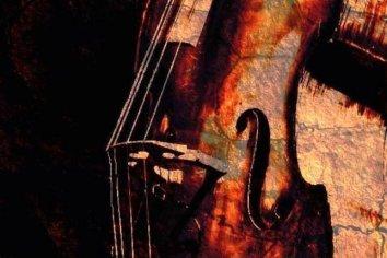 Cello texture close-up