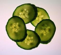 slices-of-cucumber